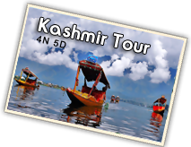 India Tour City Provide Kashmir Tour Packages On Best Rates.